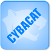 All About Cybacat - UK Corporate Web Design
