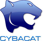 Cybacat - Uk Corporate Web Design